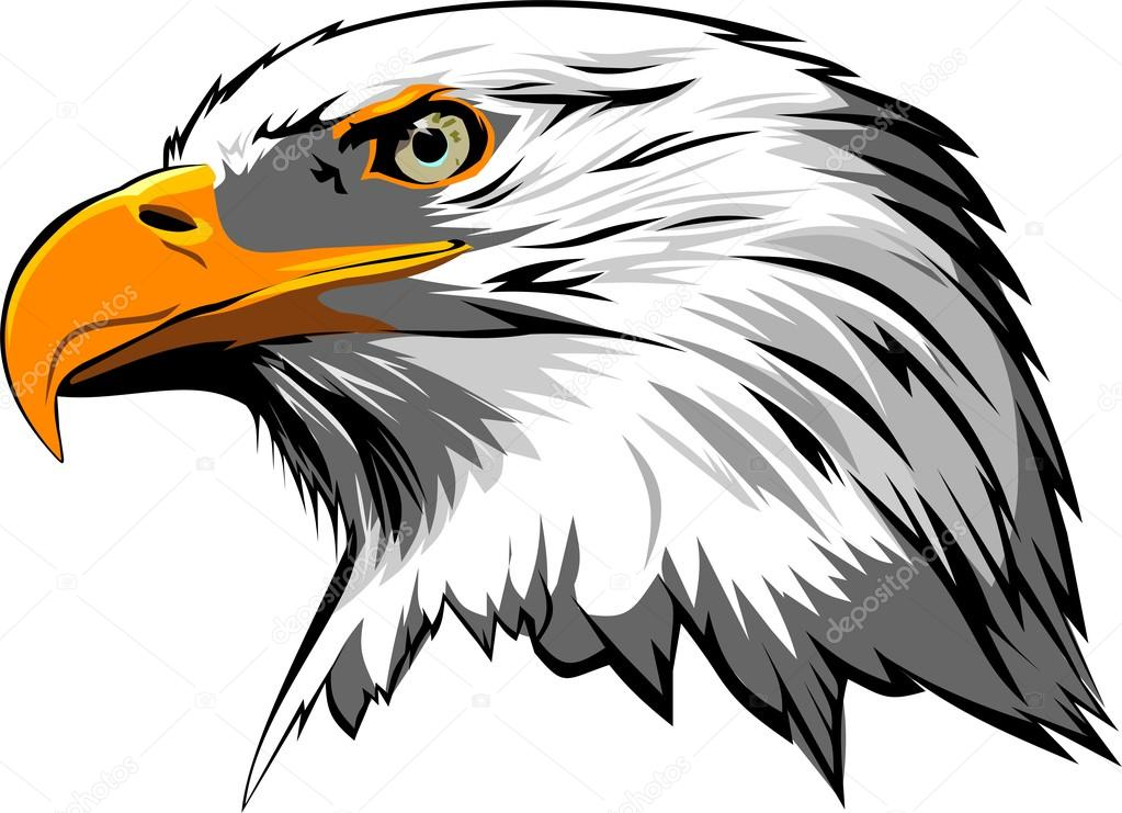 cabeza de  u00e1guila vector vector de stock  u00a9 fishvector free eagle vector graphics free eagle vector image