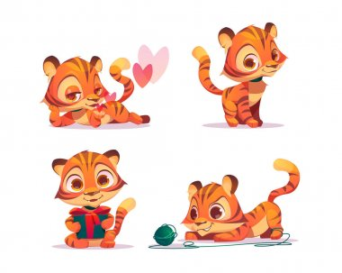 Cute baby tiger character in different poses. Vector set of cartoon chat bot, funny kitten flirts, holding gift box and plays with clew. Creative emoji set, animal mascot icon