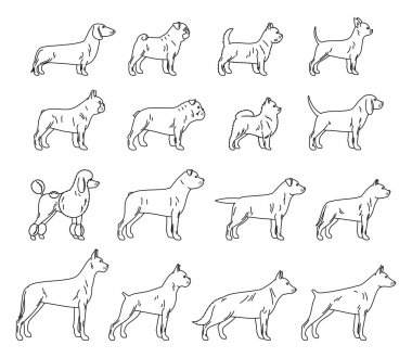 Vector dog thin line icons collection isolated on white