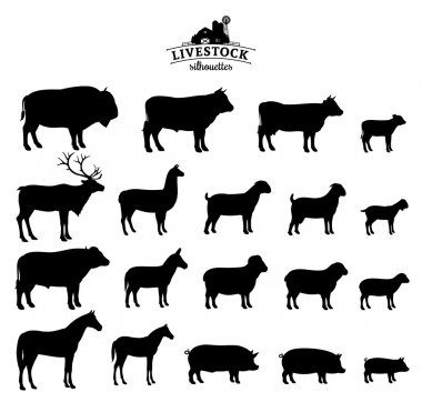 Vector Livestock Silhouettes Isolated on White