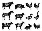 Photo Farm Animals Silhouettes Collection, Butchery Labels Templates