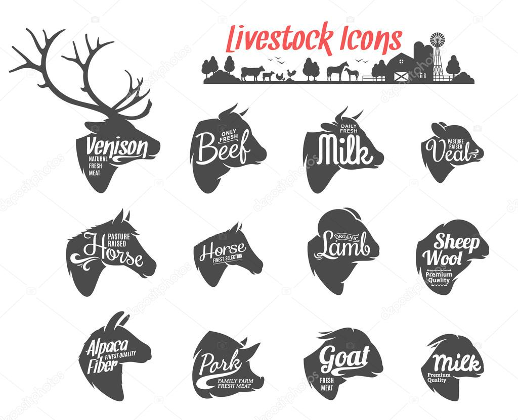 Colección de iconos de animales. Plantillas de etiquetas de ganado ...