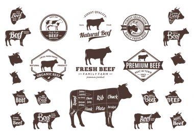 Vector Beef Logo, Icons, Charts and Design Elements