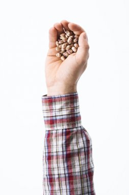 Hand holding seeds