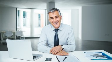 Confident handsome businessman sitting at office desk and smiling at camera stock vector