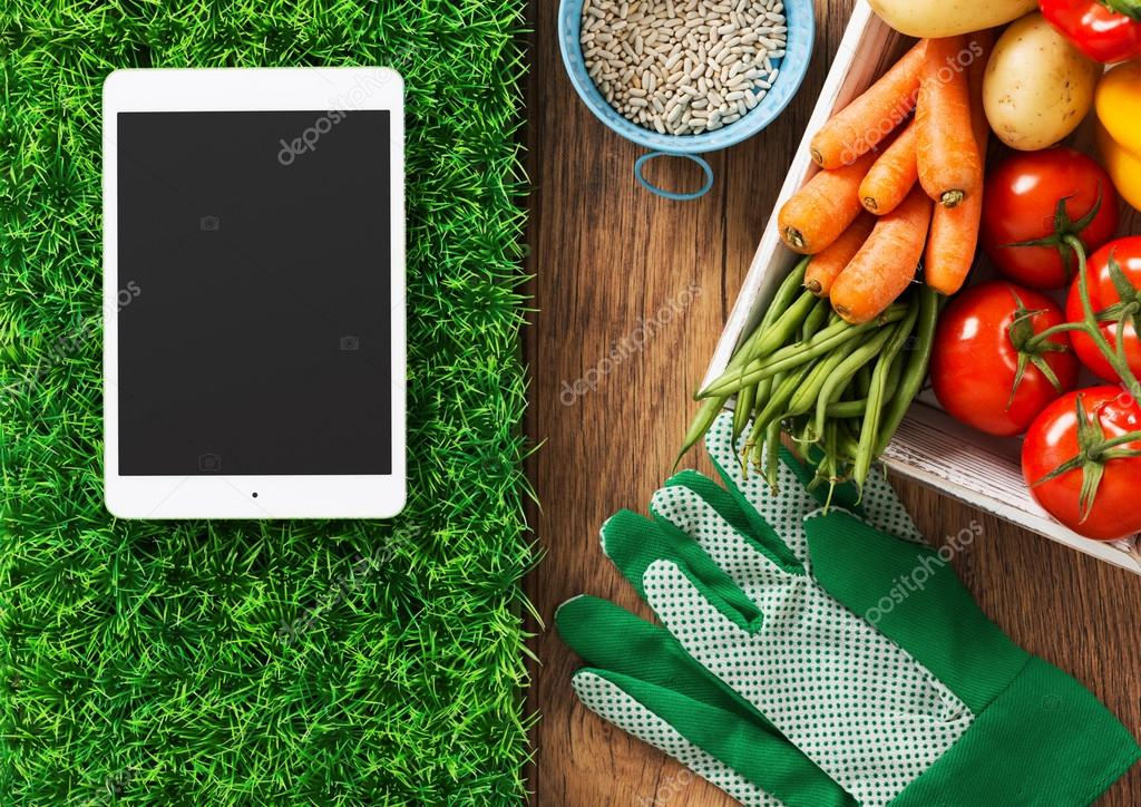 Gardening app, Touch screen tablet on grass
