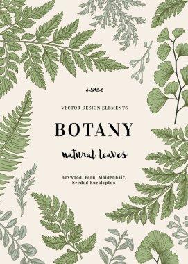 Botanical illustration with leaves