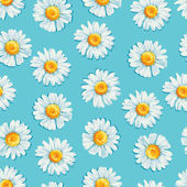 Fotografie  Floral seamless pattern.