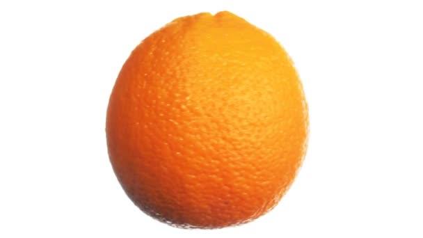 Orange Vertical