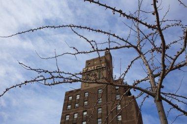 YMCA Building - Harlem, New York