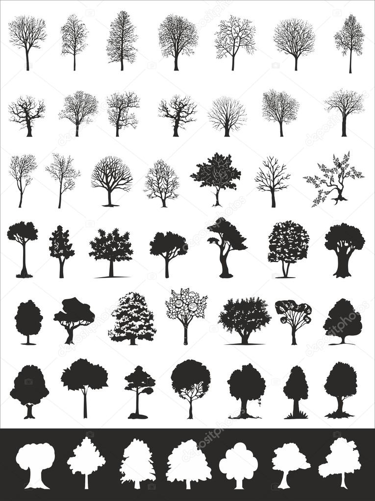 Trees, vector collection