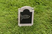 Dřevěné prkno Rybaření na trávě. Talíř s obrázkem ryby. Kreslí pastelkami. Obrázková ryba dítěte.