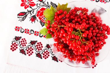 Viburnum on embroidered cross-stitch pattern. Top view