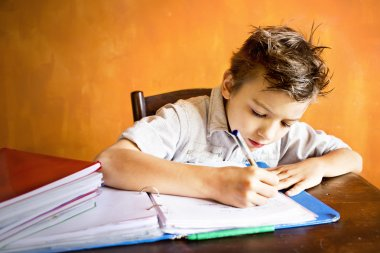 A young boy is doing homework