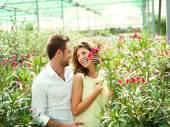 Bavit se pár výběr květináče ve skleníku