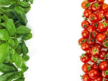 The Italian flag made up of fresh vegetables. Italian symbol