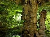 Cenote sotterraneo in Messico