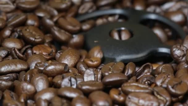 Coffee beans grinding in coffee machine