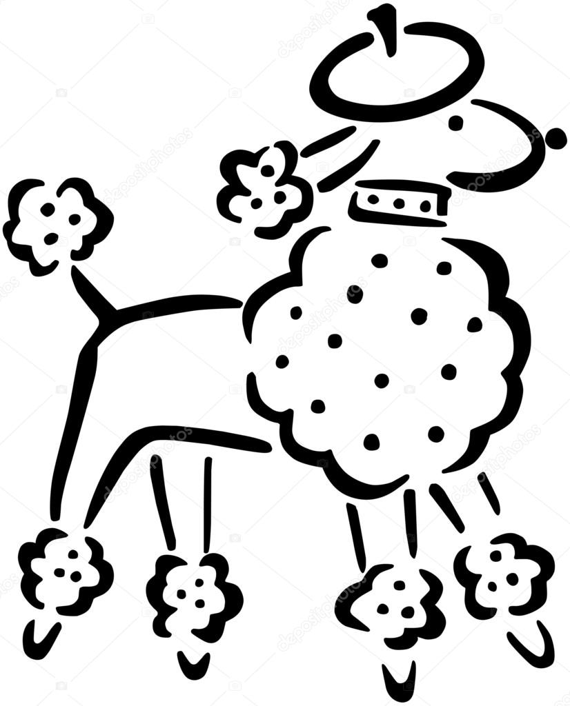 french poodle stock vector retroclipart 55671619 rh depositphotos com  french poodle clipart