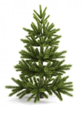 Christmas tree on a white background.