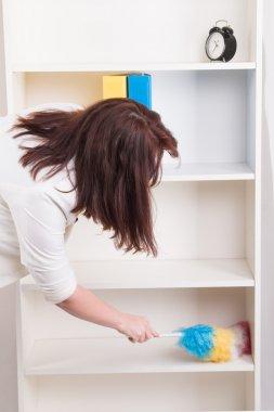 woman wiping dust in office
