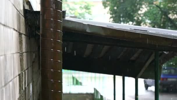 Detail pršelo