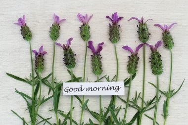 Good morning card with lavender flowers on white wooden surface