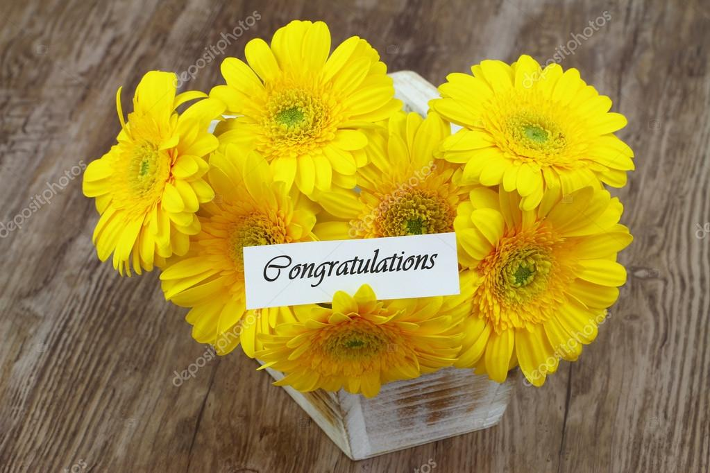 A rodar XLV - Página 5 Depositphotos_77656402-stock-photo-congratulations-card-with-yellow-gerbera