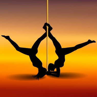 Two Pole dancers with long and short hair  on the pole  on the y