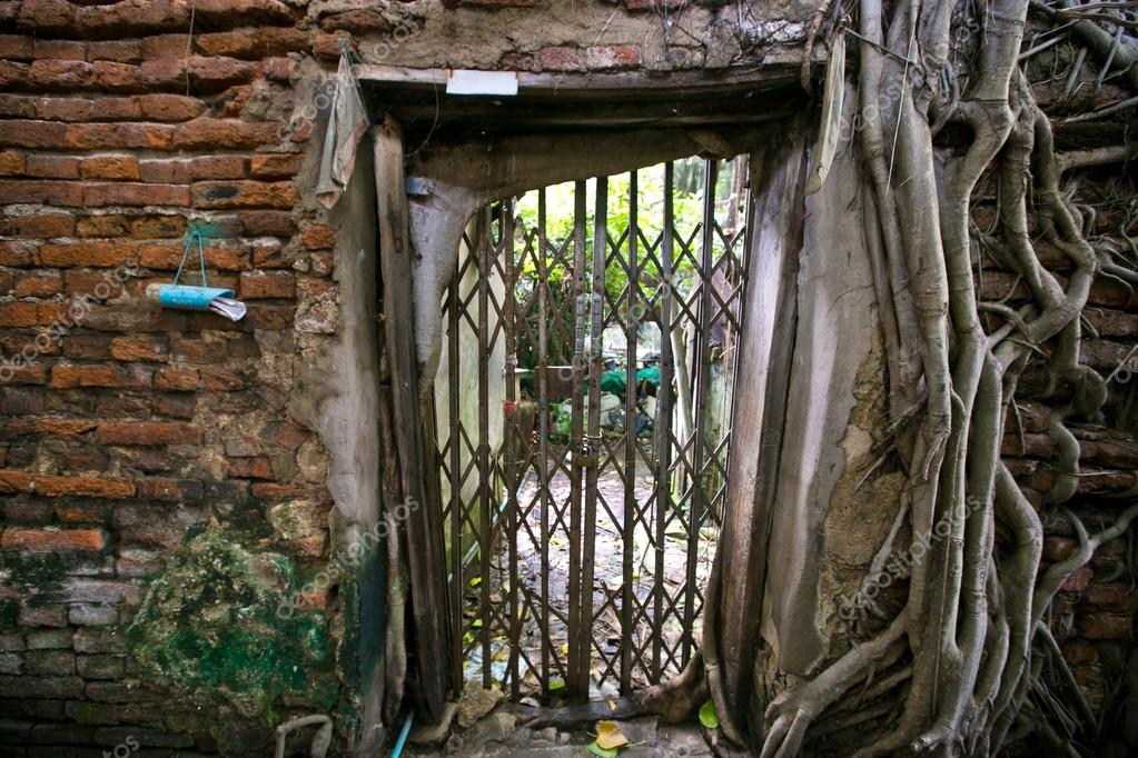 Brick Wall With Grate Door And Ancient Root Tree U2014 Photo By AnnaTamila