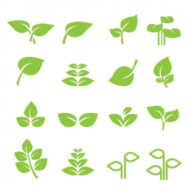 Leaf icon stock vector