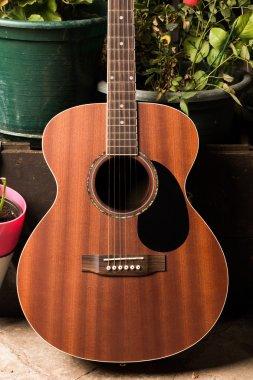 Acoustic woody guitar