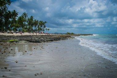 Brazilian Beaches - Praia de Carneiros, Pernambuco