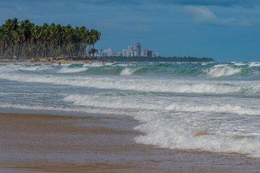Brazilian Beaches - Paiva Beach, Pernambuco - Brazil