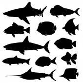 Fotografia illustrazione vettoriale di diversi tipi di silhouette di pesce