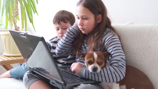 4k. malý roztomilý kavkazský dívka a chlapec v brýle studium v notebooku se psem