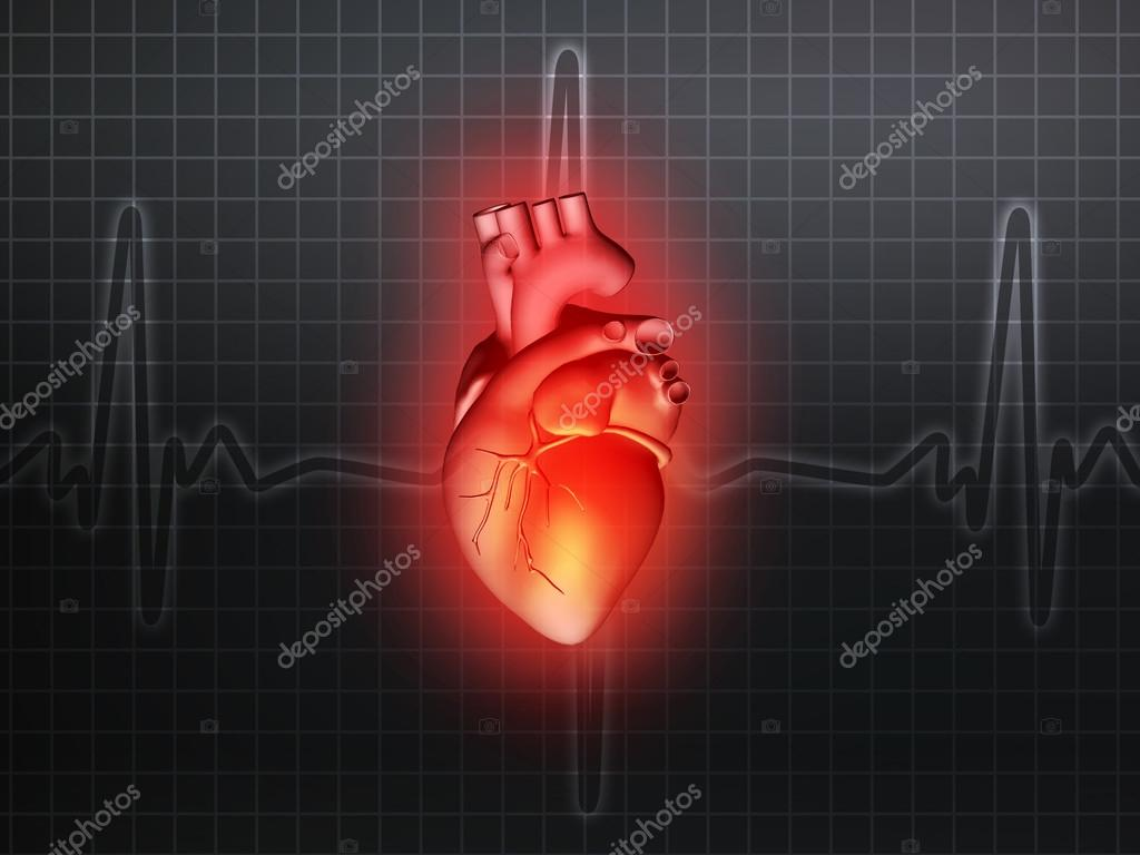 heart disease 3d anatomy illustration gray — Stock Photo © artefacti ...