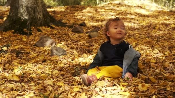 Kisfiú ül a füvön a lehullott levelekben a parkban fényes és napos őszi napon nézi a sárga levelet a kezében, és mosolyog. Boldog kisfiú nevet a szabadban.