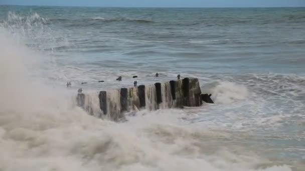 Vlnách Černého moře během bouře tříštící se na molu na pláži v Soči