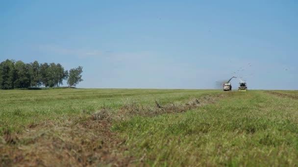 Zemědělci sklizeň silážní Combain v poli