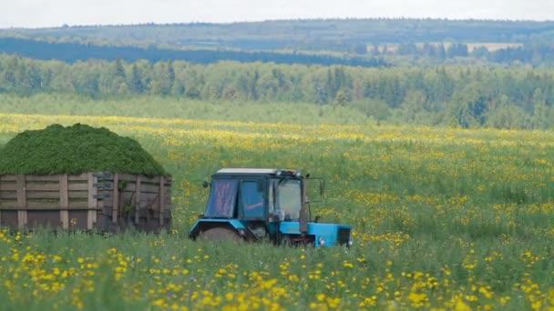 Traktor v oblasti Rusko