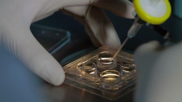 Ukládání mražených vajíčka spermií v poli tekutým dusíkem
