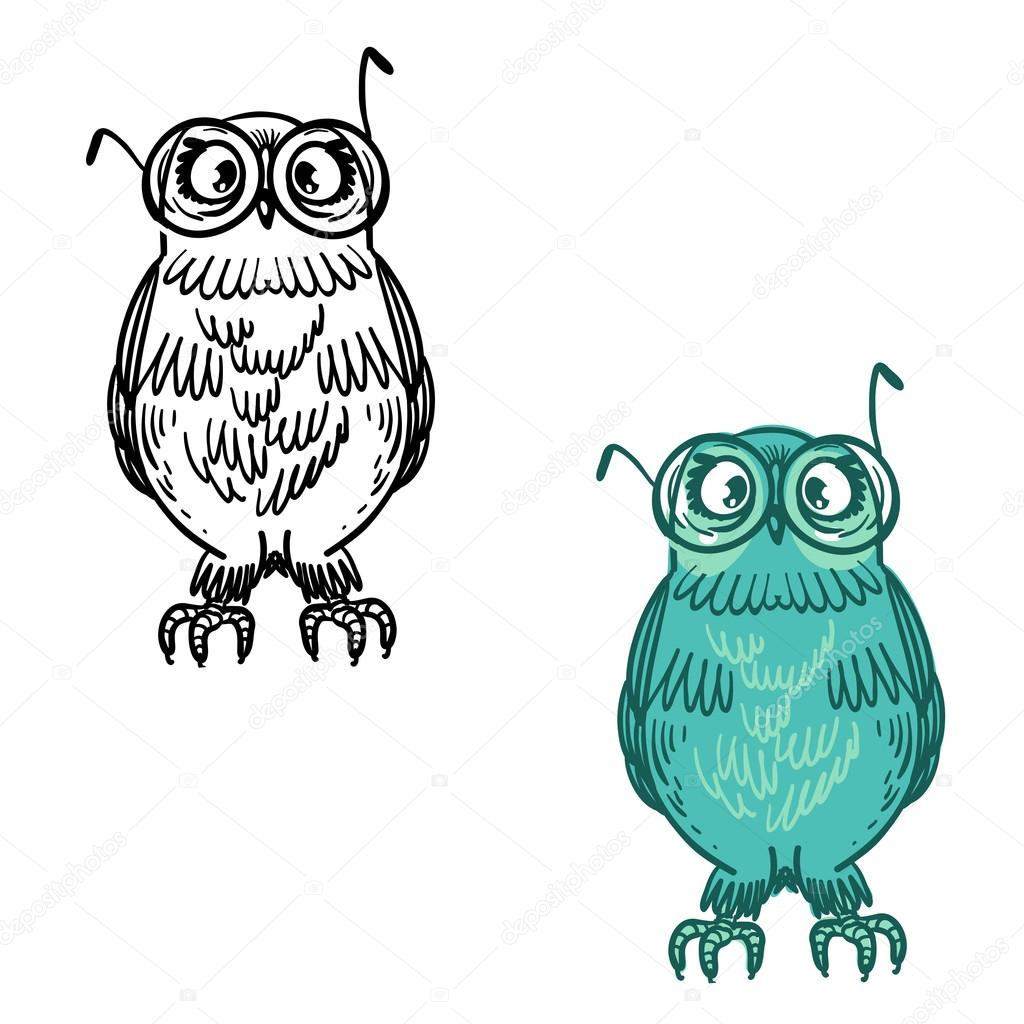 Cute Vector Bright Owls