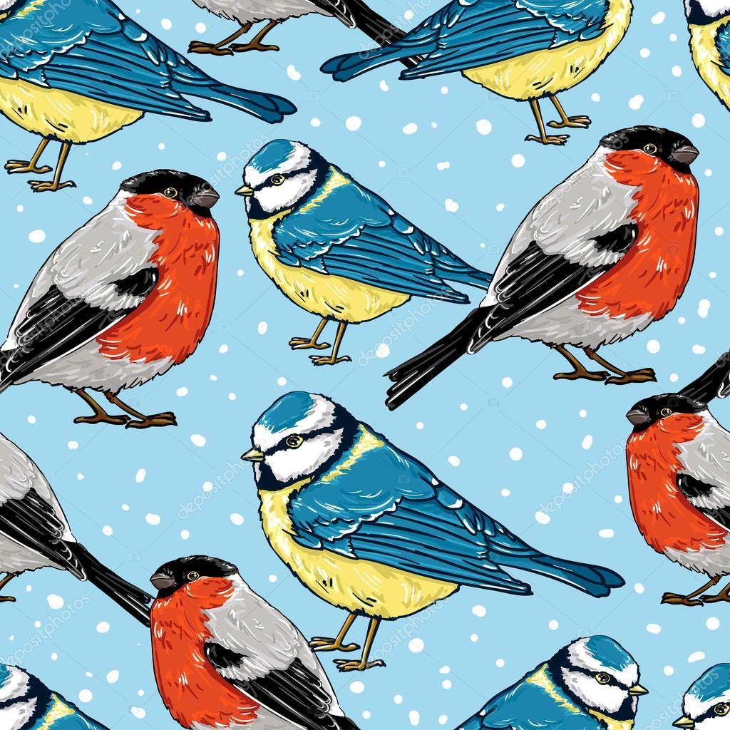 Снегирь и синичка картинка для детей