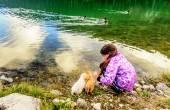 Fényképek Játszik a kölykök a parton, a fekete-tó, Durmitor kislány