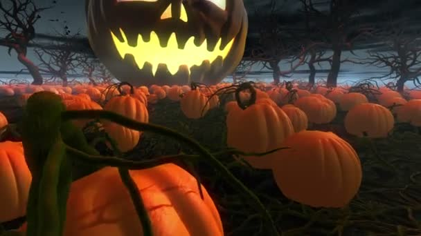 King of pumpkins. Horror Halloween 3d animation. Giant jack o lantern rolling by  pumpkin field