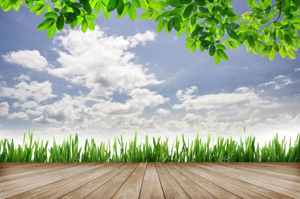 wooden platform and green grass with blue sky background