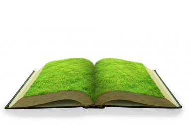 Open grass book isolated on white background stock vector