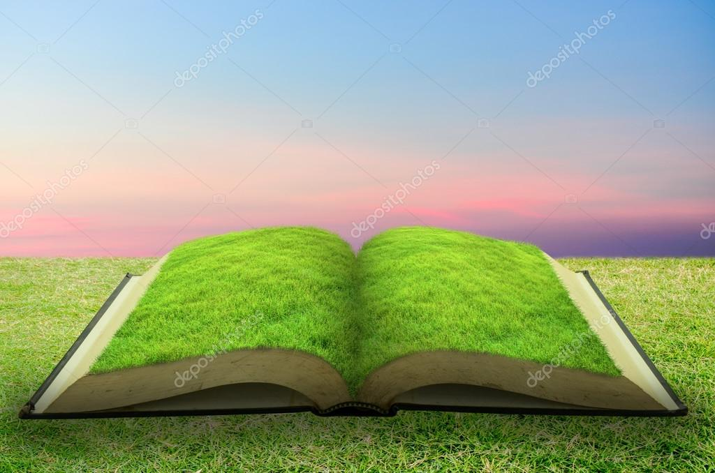 Open grass book with sky background