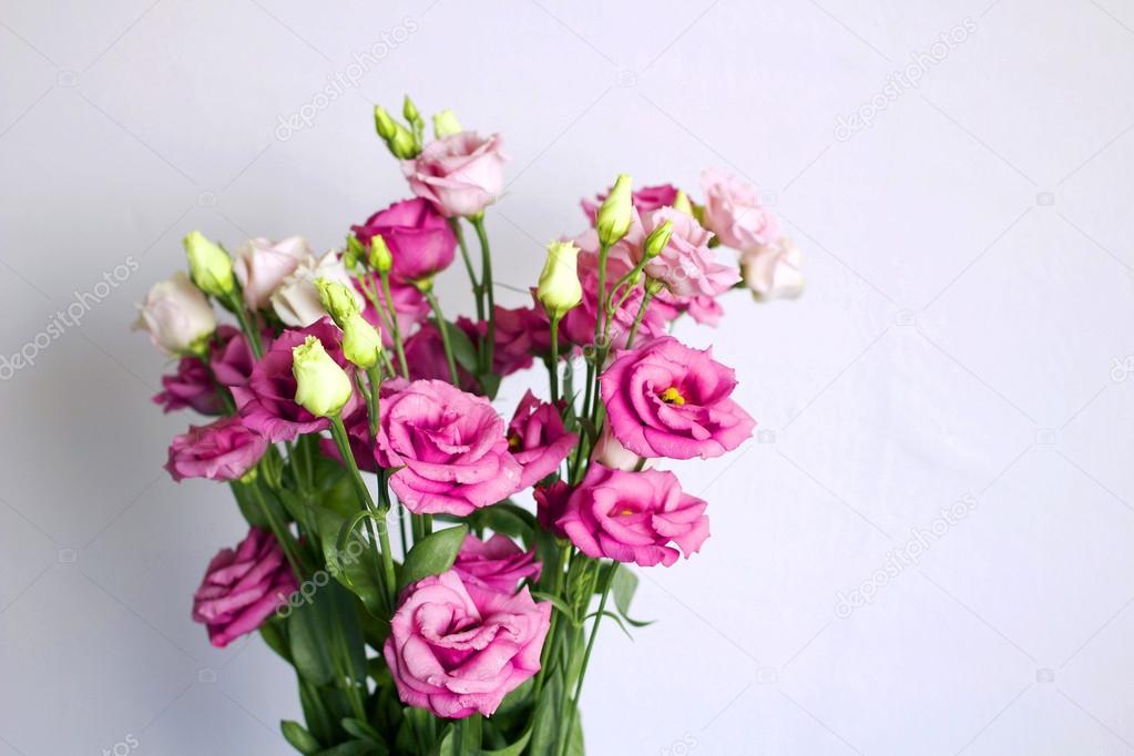Ein Bouquet von Rosa blühenden Blumen gegen eine weiße Wand ...